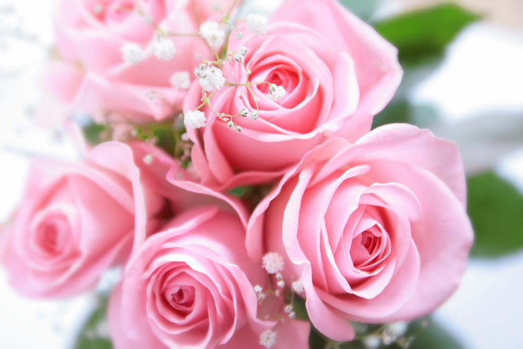 バラの花束保存